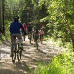 Header Image - Group biking